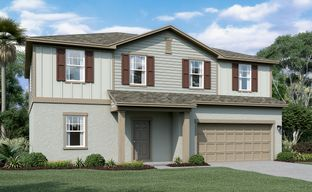 Shell Cove by Starlight Homes in Tampa-St. Petersburg Florida