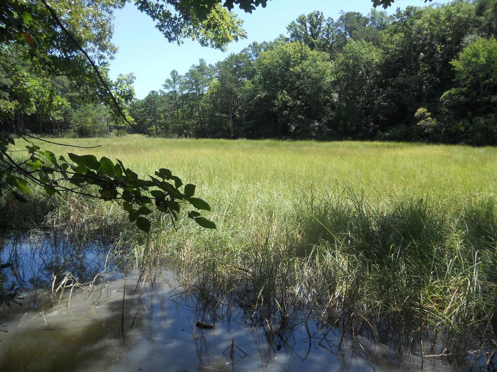 Fishers Creek