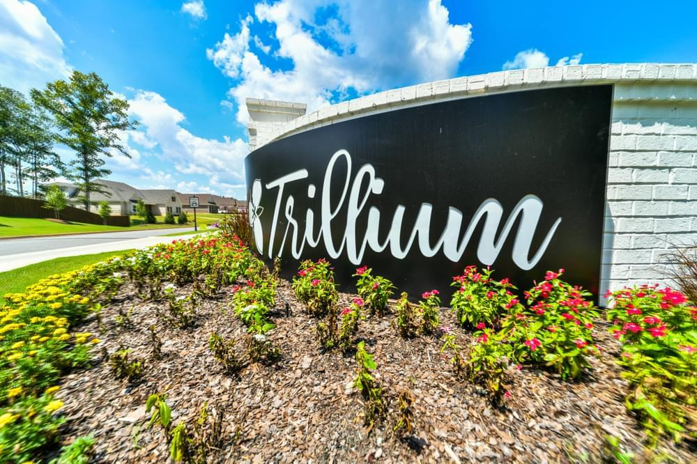 'Trillium' by Stone Martin Builders in Auburn-Opelika
