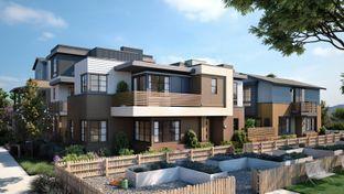 The Bungalows- Plan 2B - Bellaterra: Los Gatos, California - SummerHill Homes