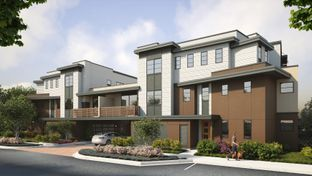 The Flats- Plan 1-M - Bellaterra: Los Gatos, California - SummerHill Homes