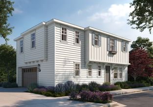 1E - Montalvo Oaks: Los Gatos, California - SummerHill Homes