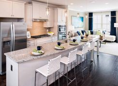 Hadden - Cabin Branch Manor Townhomes: Clarksburg, District Of Columbia - Tri Pointe Homes