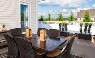 Birchwood Bungalows at Brambleton by Tri Pointe Homes in Washington Virginia