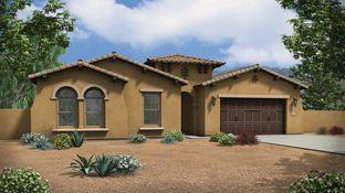 Cholla - Estates at The Meadows: Peoria, Arizona - Tri Pointe Homes