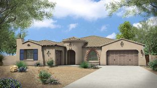 Pinnacle - Estates at The Meadows: Peoria, Arizona - Tri Pointe Homes