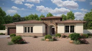 Expedition - Pathfinder North at Spur Cross: Queen Creek, Arizona - Tri Pointe Homes