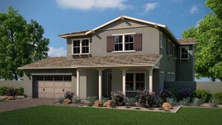 Rancher - Lakeview Trails at Morrison Ranch: Gilbert, Arizona - Tri Pointe Homes