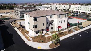Plan 5 - Solmar: San Diego, California - Tri Pointe Homes