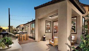 Residence 2 - Vita: Beaumont, California - Tri Pointe Homes