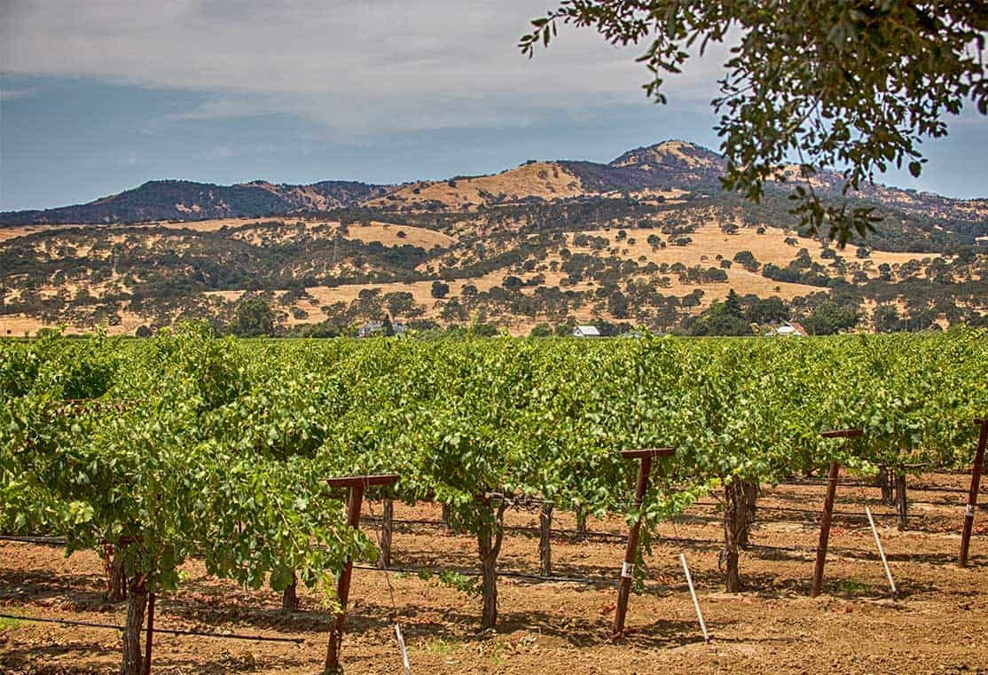 TPH-neighborhood-Shimmer-VinesMountains-1114x761-1:Fairfield, CA