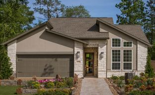 Villas at The Groves 50' by Tri Pointe Homes in Houston Texas