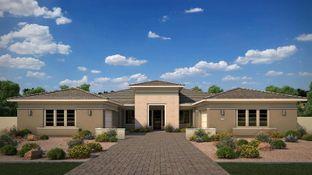 Oak - Domaine at Waterston: Gilbert, Arizona - Tri Pointe Homes