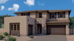 Grove - Avocet at Waterston: Gilbert, Arizona - Tri Pointe Homes