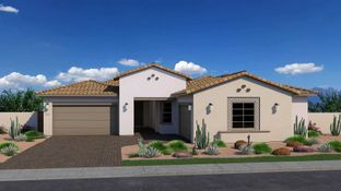 Pecan - Canopy South: Chandler, Arizona - Tri Pointe Homes