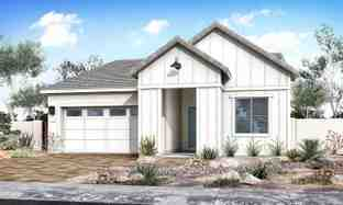 Cedar - Grove at Madera: Queen Creek, Arizona - Tri Pointe Homes