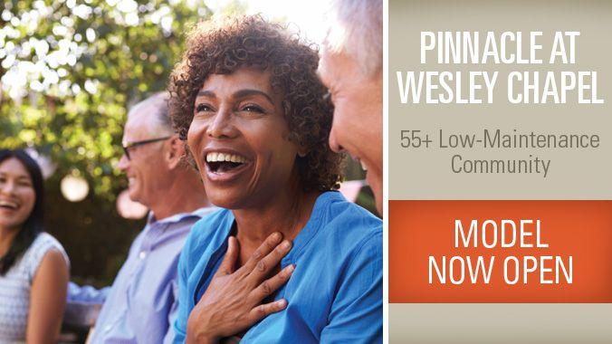 Pinnacle at Wesley Chapel,28110