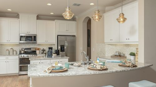 Kitchen-in-Fiji-at-The Enclave at Channing Park-in-Lithia
