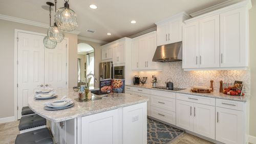 Kitchen-in-BARBADOS-at-Cypress Chase-in-Tampa