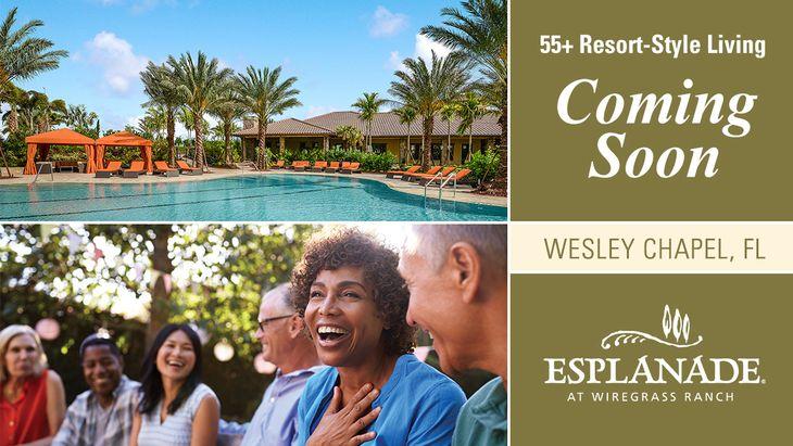 Esplanade at Wiregrass Ranch,33543