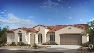 Crestone - Estates at Eastmark Summit Collection: Mesa, Arizona - Taylor Morrison