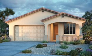 Victoria Heights Discovery Collection by Taylor Morrison in Phoenix-Mesa Arizona