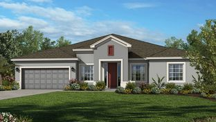 Abaco - The Canyons at Highland Ranch: Clermont, Florida - Taylor Morrison