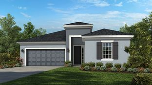 Antigua - The Canyons at Highland Ranch: Clermont, Florida - Taylor Morrison
