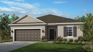 Aruba Plan - Woodland Park: Orlando, Florida - Taylor Morrison