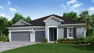 Saint Croix Traditional Plan - Woodland Park: Orlando, Florida - Taylor Morrison
