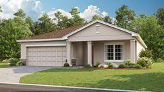 497 Ogelthorpe Drive (Magnolia)