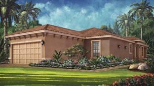 Roma Plan - Esplanade at Starkey Ranch: Odessa, Florida - Taylor Morrison