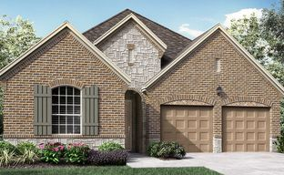 Auburn Hills Willowcreek 55s by Darling  Homes in Dallas Texas