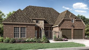6733 - The Woodlands, Smooth Stream 65s - Darling: The Woodlands, Texas - Taylor Morrison