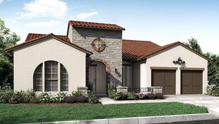 6733 - The Woodlands, Smooth Stream 65s: The Woodlands, Texas - Darling  Homes