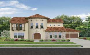 Avalon at Riverstone 80s by Darling  Homes in Houston Texas