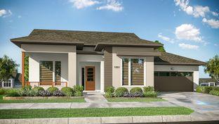 1505 - Bonterra at Cross Creek Ranch Cottages: Fulshear, Texas - Darling  Homes