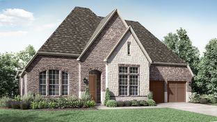 6744 - The Woodlands, Smooth Stream 65s: The Woodlands, Texas - Darling  Homes