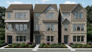 Macadamia Plan - Founders Parc 55s: Euless, Texas - Taylor Morrison