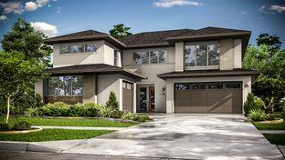 5803 - Avalon at Riverstone 60s: Sugar Land, Texas - Darling  Homes