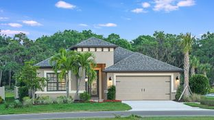 Saint Thomas - Cassia at Skye Ranch: Sarasota, Florida - Taylor Morrison