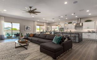 Rovey Park Expedition Collection by Taylor Morrison in Phoenix-Mesa Arizona
