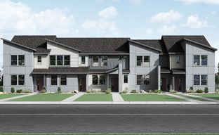 The Westerly Collection at Altaira at High Point by Taylor Morrison in Denver Colorado