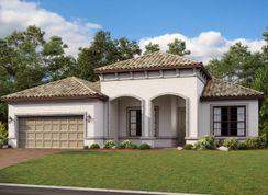 Ambra - Esplanade at Wiregrass Ranch: Wesley Chapel, Florida - Taylor Morrison