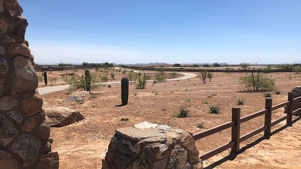 'Fiesta at Rancho Mercado' by Taylor Morrison - Phoenix in Phoenix-Mesa