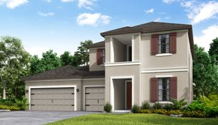 Caladesi - Bellalago: Kissimmee, Florida - Taylor Morrison