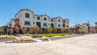 Condo Plan 7 - Elev8tion in Sunnyvale: Sunnyvale, California - Taylor Morrison