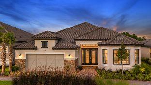 Pallazio - Esplanade at Wiregrass Ranch: Wesley Chapel, Florida - Taylor Morrison