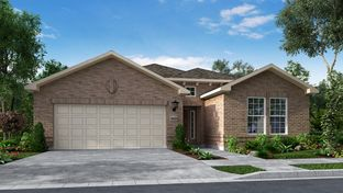 Cyan - Bluffview 50s: Leander, Texas - Taylor Morrison