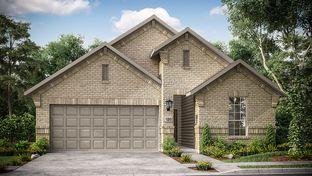 Juneberry - South Oak 50s: Oak Point, Texas - Taylor Morrison